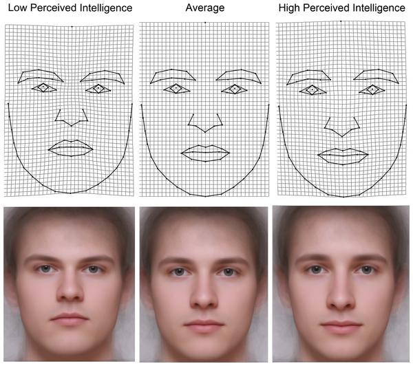 We Predict The Key Looks For Your: Mužská Tvář Prozradí Stupeň Inteligence, ženská Nikoliv